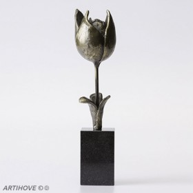 Luxury gifts of Artihove - Spring tulip - 018684MSLQ